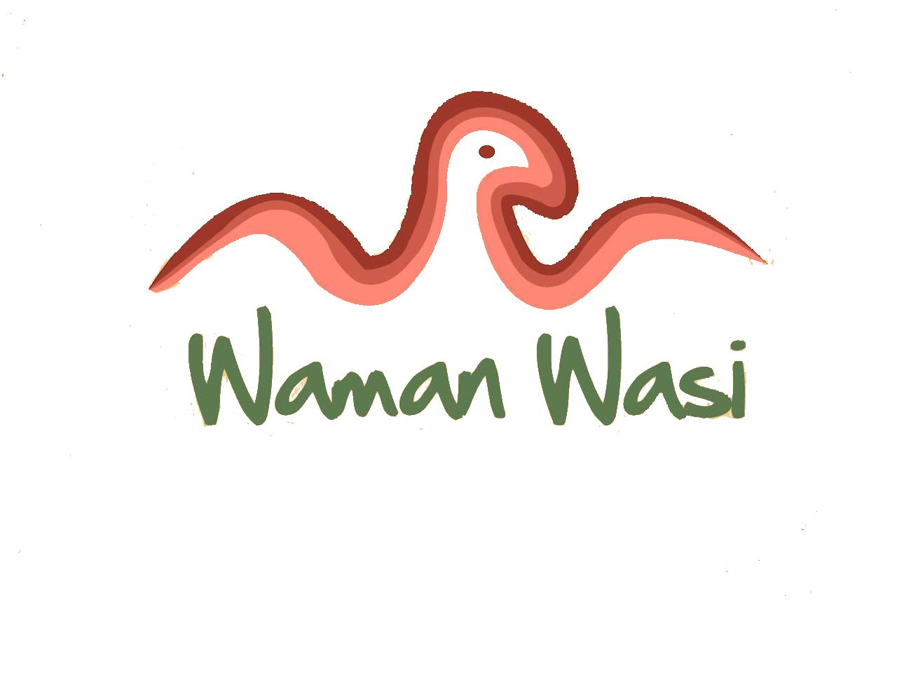 Aula Virtual Waman Wasi